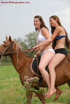 Girl and donkey sexy